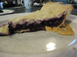 blueberry_pie_slice